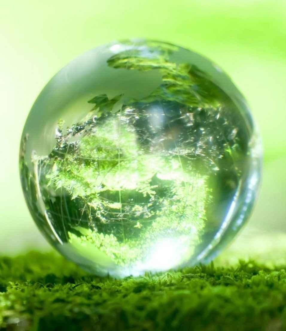 verde_planeta