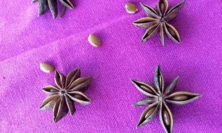 magia com anis estrelado – prosperidade, boa sorte e mais