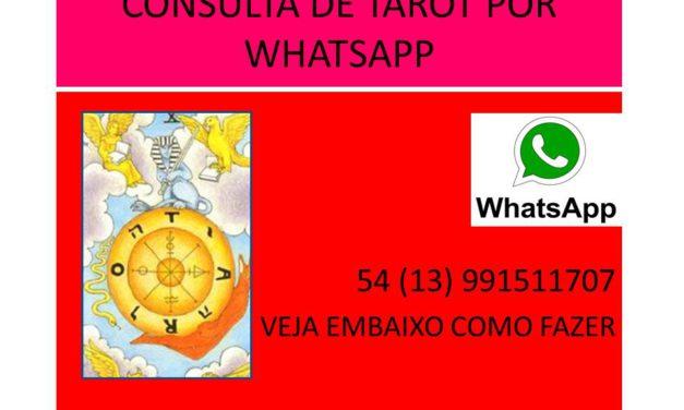 CONSULTA POR WHATSAPP  54 (13) 991511707